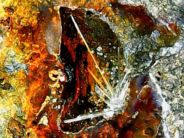 SCLAIGNEAUX site qui contient de minéraux de scorie Win_2210