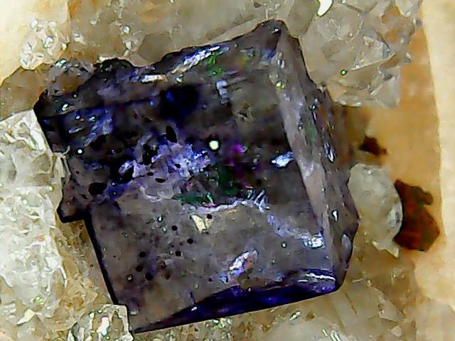 Différentes fluorites de la mine CLARA Win_2263