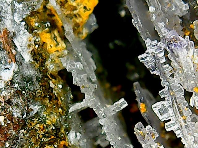 Différentes fluorites de la mine CLARA Win_2268