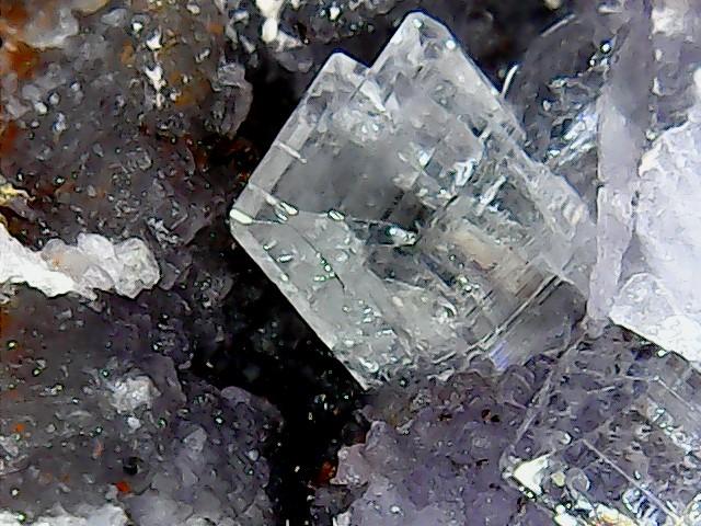 Différentes BARITES  de la mine CLARA - Page 2 Win_2289