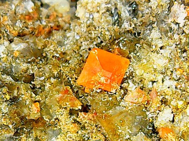 Wulfénite de Pontgibaud  + barite et fluorite Win_2414
