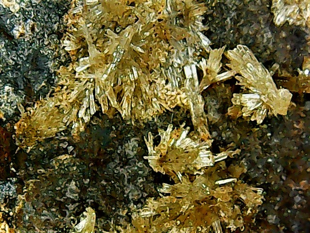 Aragonite et ou calcite Win_2834