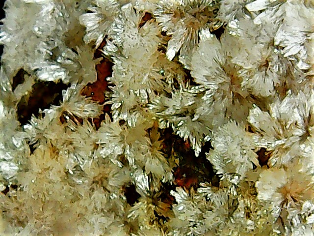 Aragonite et ou calcite Win_2836