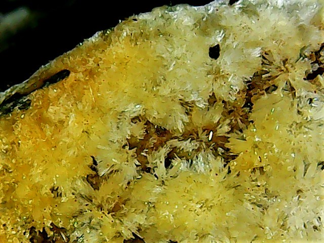 Aragonite et ou calcite Win_2839