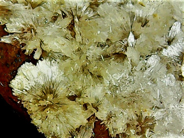Aragonite et ou calcite Win_2840