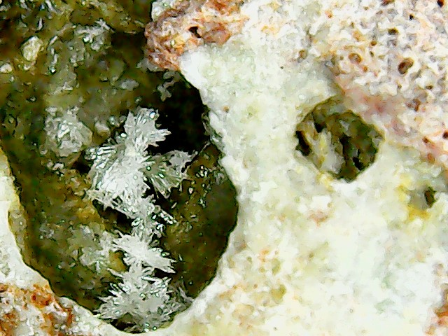 Aragonite et ou calcite Win_2851