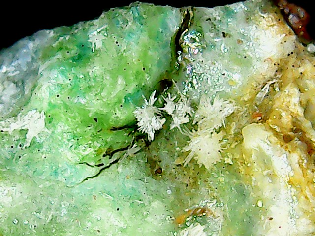 Aragonite et ou calcite Win_2852