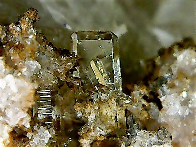 Différentes BARITES  de la mine CLARA - Page 2 Win_2933