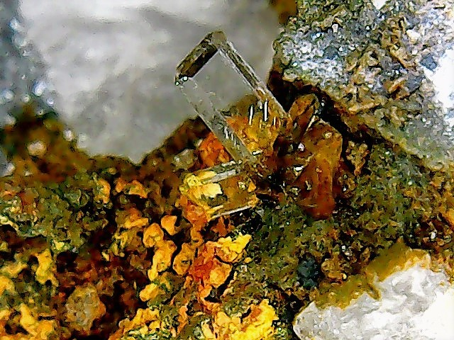 Différentes BARITES  de la mine CLARA - Page 2 Win_2935