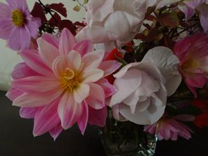 bouquets de souvenirs d'été 110