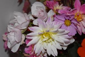 bouquets de souvenirs d'été 310