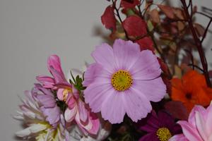 bouquets de souvenirs d'été 410