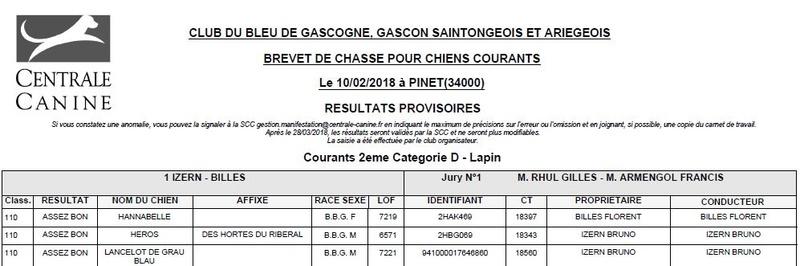 Les bbg en brevets saison 2017/2018 Lapin115