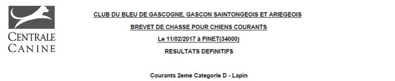 Les bbg en brevets saison 2016/2017 Lapin119