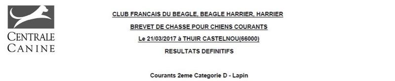 Les bbg en brevets saison 2016/2017 Lapin123