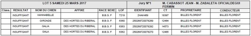 Les bbg en brevets saison 2016/2017 Lapin124