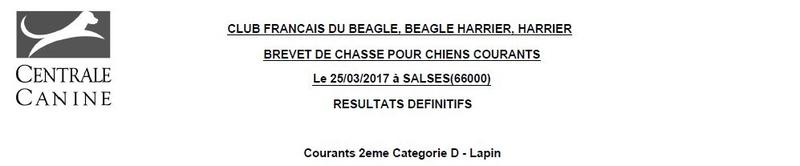 Les bbg en brevets saison 2016/2017 Lapin125