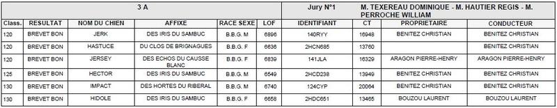 Les bbg en brevets saison 2017/2018 Liyvre13