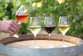 Wijnproeverij! Proef10