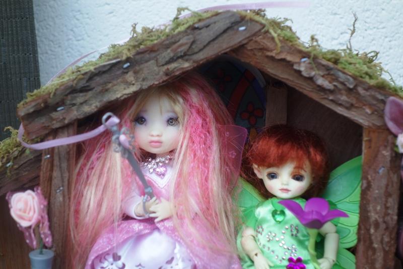 Moonki, mon craquant petit cadeau d'anniversaire est de retour, en compagnie de... 2_dsc013