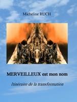 """Introduction de """"MERVEILLEUX est mon nom - Itinéraire de la transformation"""" Couver24"""