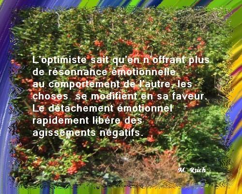 Newsletter du 22 mai 2018 du Jardin du Rêve Dytach10