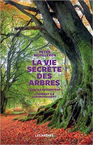 Hommages aux arbres - Page 3 Ob_40810