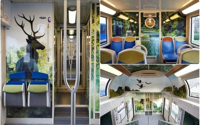 [Ligne N] Paris-Montparnasse - Versailles-Chantiers - Rambouillet (48 km) 75821910