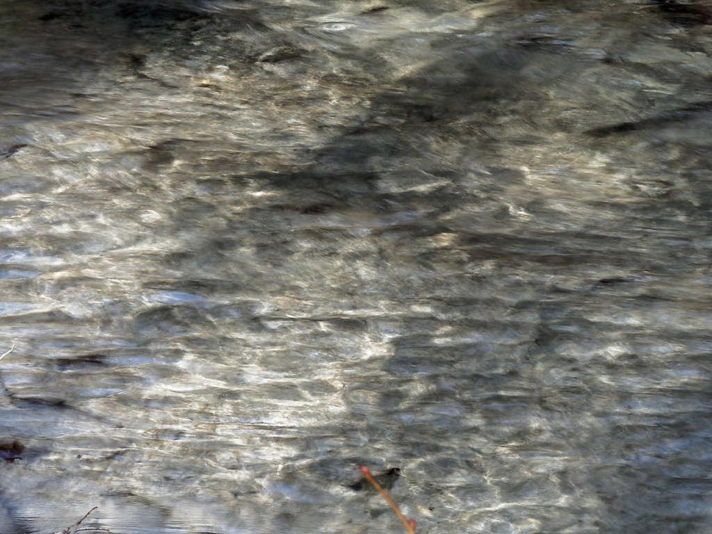 Jeux d'eau au ru blanc P3140014