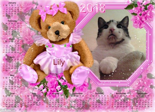 Le blog de Lily Y3mo-119