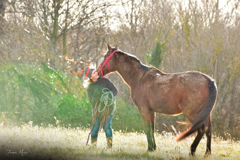"""ON VOTE Concours photos """"Nos chevaux et la tendresse"""" 26805210"""