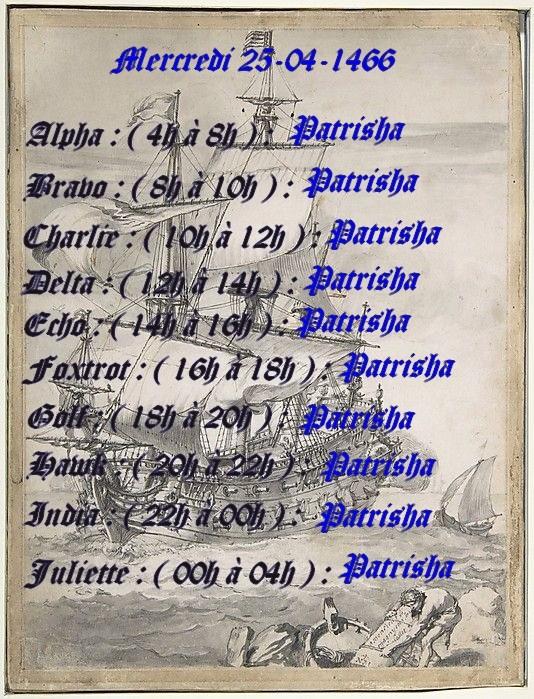 Planning journalier des Capitaines  Planni13