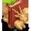 Habitat Antilope Cervicapre Blacka14