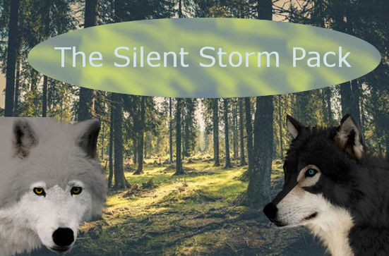 The Silent Storm Pack