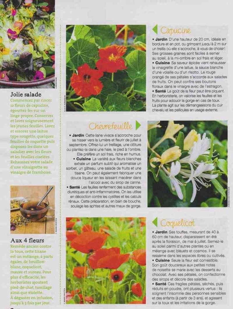 les fleurs remèdes... Bb10