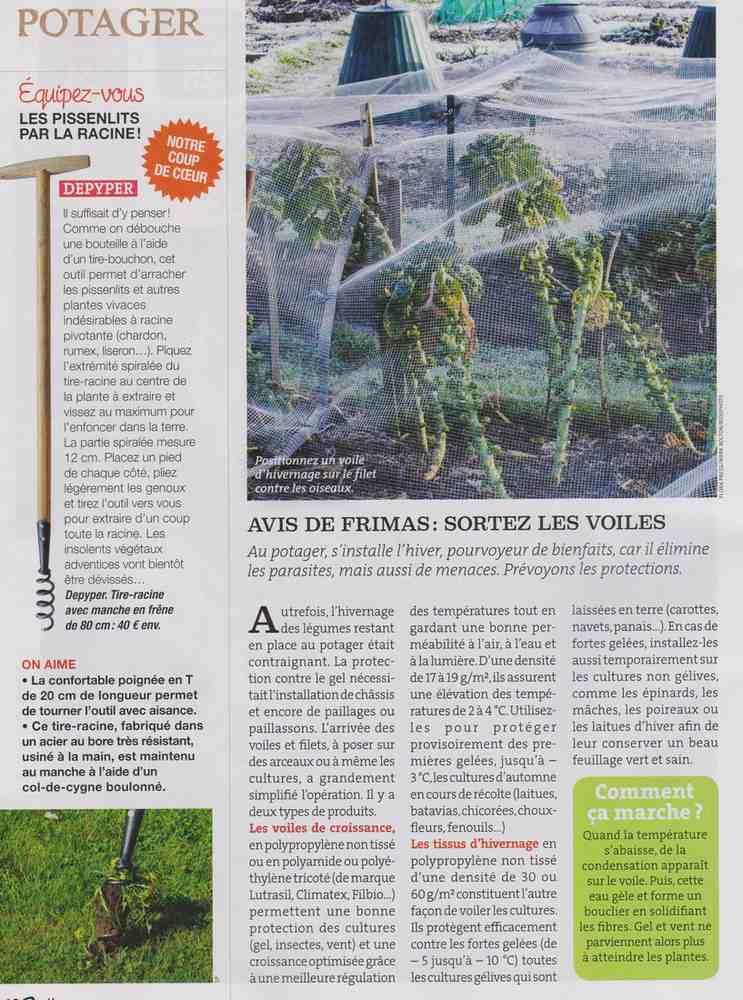 préparer l'automne et l'hiver - Page 3 C210