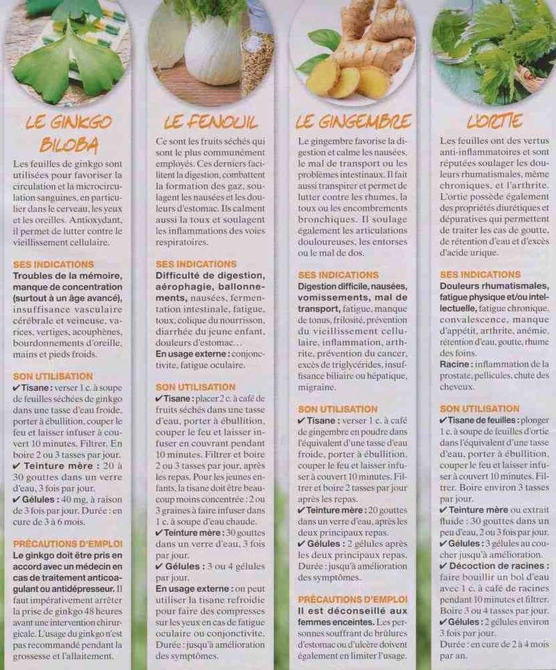 """les plantes """" santé """" F11"""