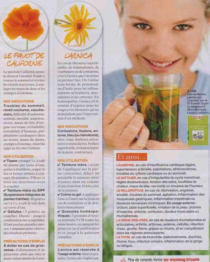 """les plantes """" santé """" G10"""