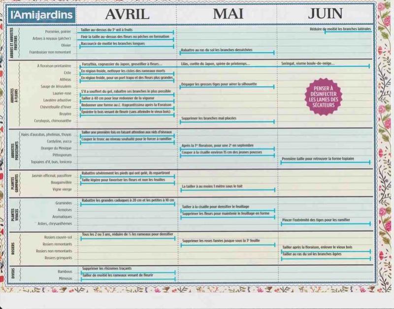 le calendrier des tailles V10