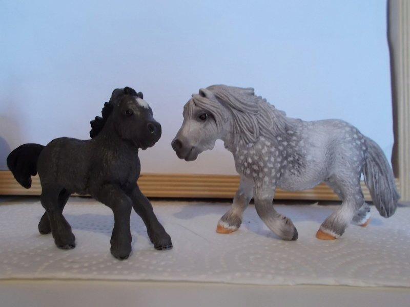 I started with repainting - Schleich horses - Page 2 Apfels10