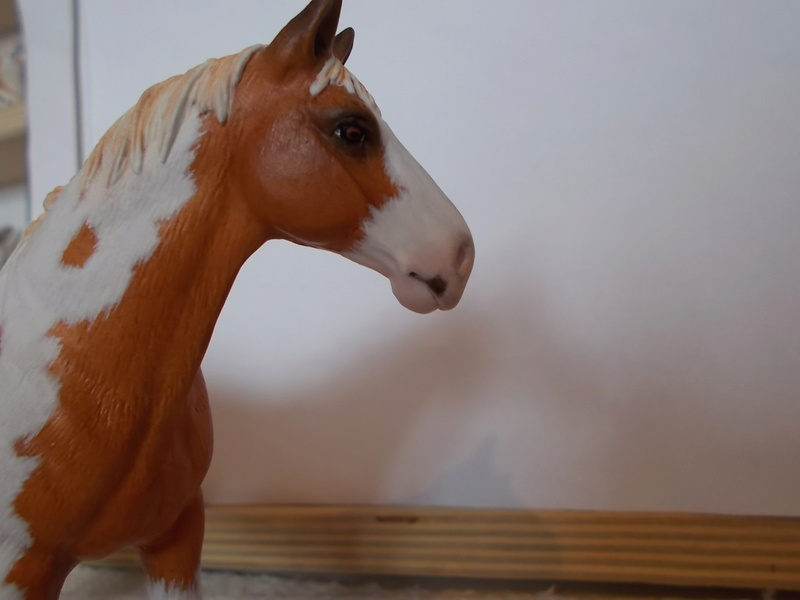 I started with repainting - Schleich horses - Page 3 Hannov21