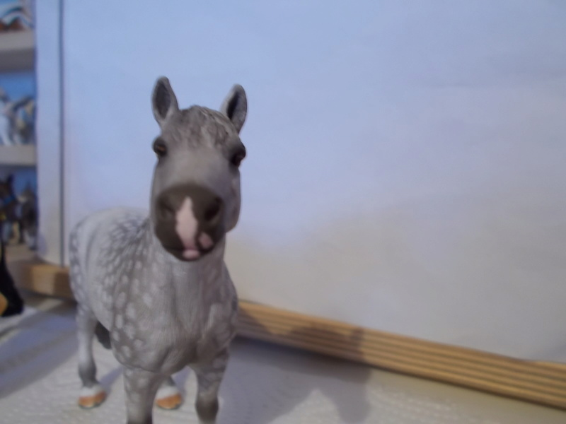 I started with repainting - Schleich horses - Page 2 Knabst13