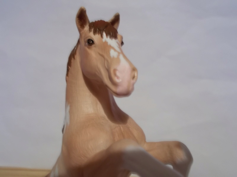 I started with repainting - Schleich horses - Page 2 Mustan39