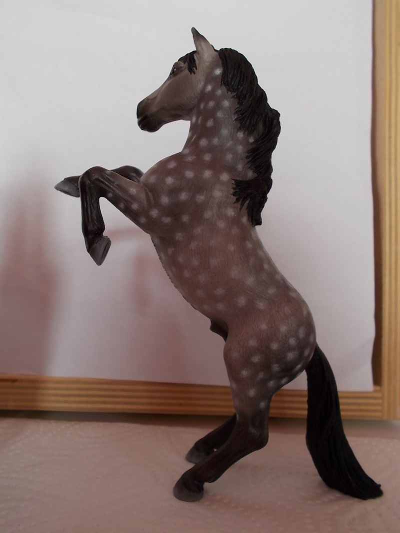I started with repainting - Schleich horses - Page 3 Mustan65