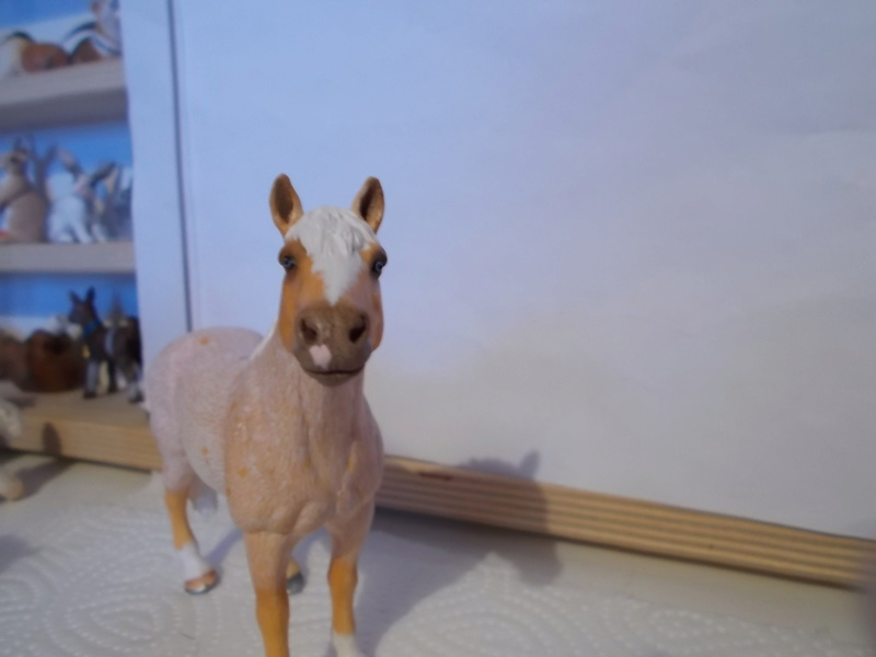 I started with repainting - Schleich horses - Page 2 Palomi21