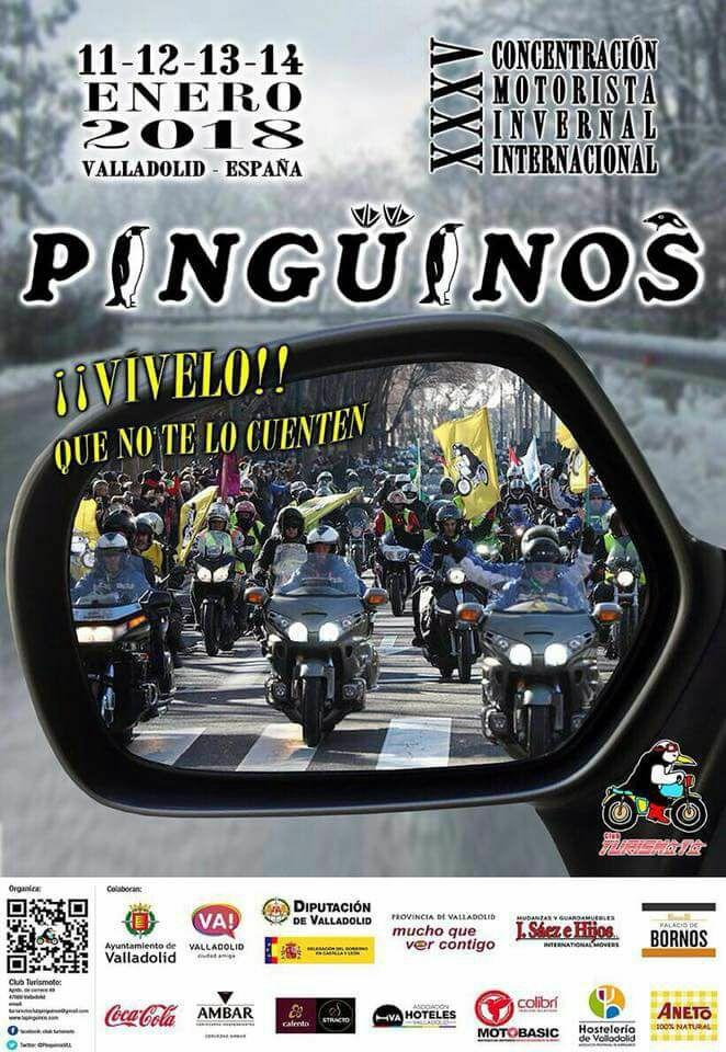 PINGOUINS à Valladolid ( Espagne) du 11 au 14 janvier 2018  Pigoui10