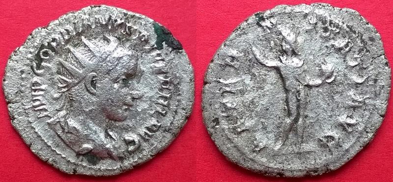 Gordien III à identifier ! Wp_20122