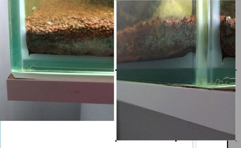 Meuble d'aquarium avec gonflement dans l'angle Aqua_c10