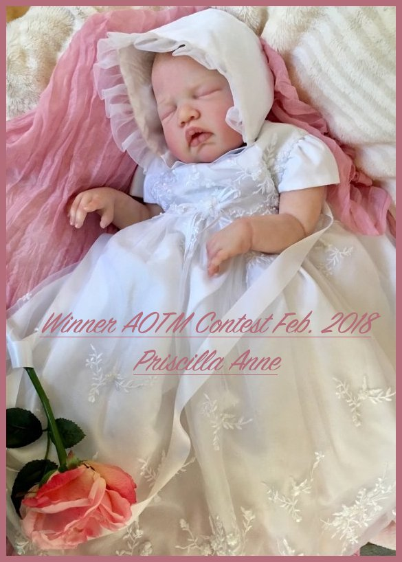 Winner of the AOTM FEBRUARY 2018 CONTEST~ Priscilla Anne - Bornannew of Artful Baby Reborns!! Baby_c17