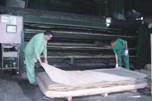 شركة لصناعة الخشب توظيف 20 عامل على الالات التقطيع بالدارالبيضاء Cema_b10